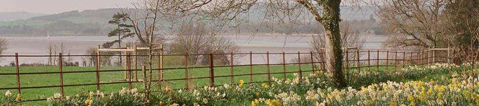 Spring Time in Lympstone