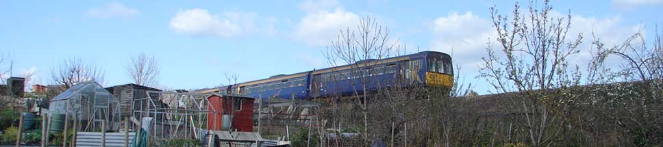 Train going past Lympstone allotments