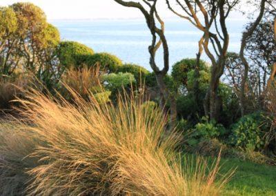 lookout garden
