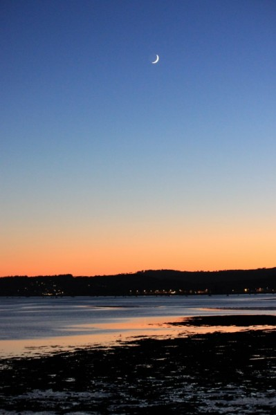 Lympstone Sunset by Jackie Michelmore