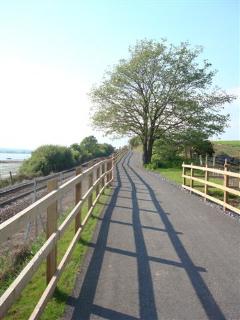 Cyclepath by Jenny Clark