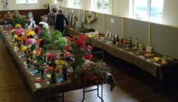 Lympstone Flower Show
