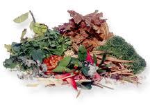 Parish Council response to Lympstone Compost closure