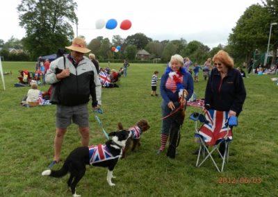 Patriotic pets