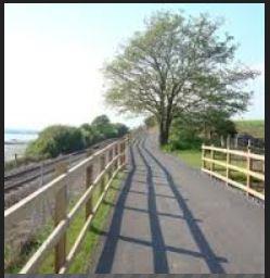 Estuary Trail Petition