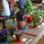 Garden Show blooms again!