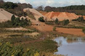 Lympstone Common; Black Hill Quarry update
