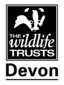 Challenge for Devon Wildlife Trust